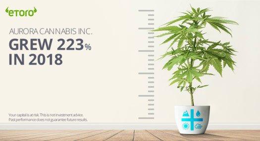 eToro Cannabis