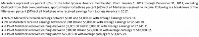 lyoness-income